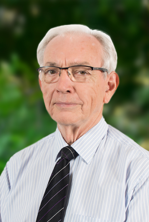 Emeritus Professor Michael Ward—Board member