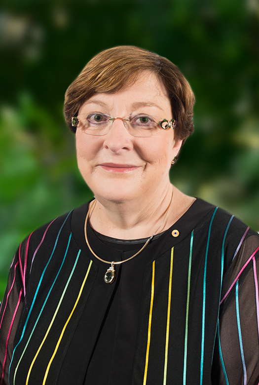 Susan Rix AM—Deputy Chair